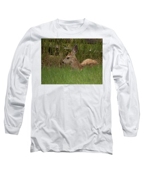 Muledeerfawn1 Long Sleeve T-Shirt