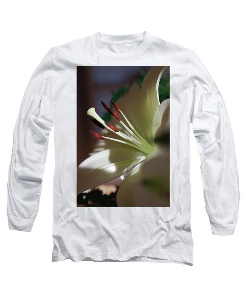 Naturally Elegant Long Sleeve T-Shirt