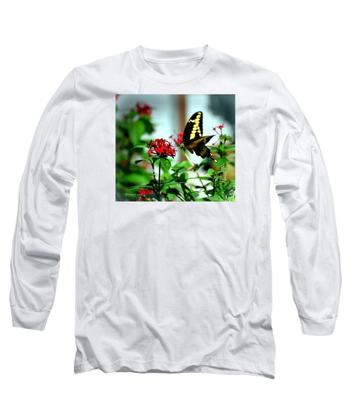 Nature's Beauty Long Sleeve T-Shirt by Edgar Torres