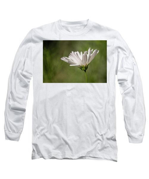 Nature's Paintbrush Long Sleeve T-Shirt