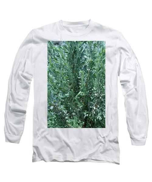 New Sage Long Sleeve T-Shirt