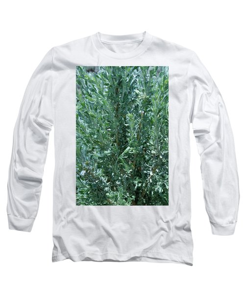 New Sage Long Sleeve T-Shirt