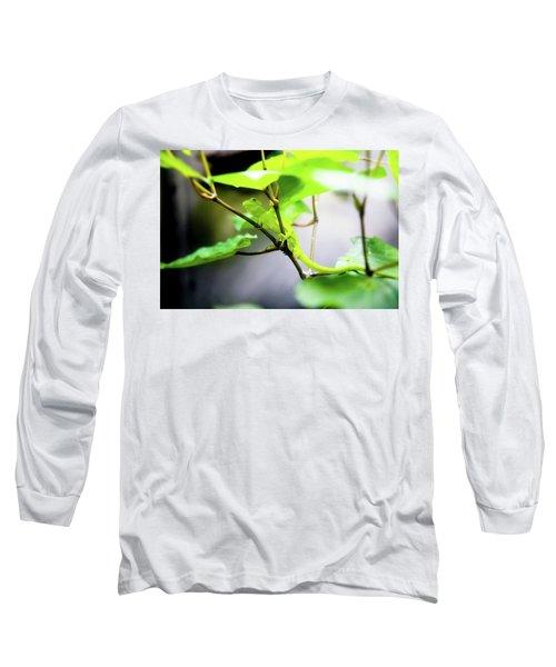 New Zealand Lizard Long Sleeve T-Shirt