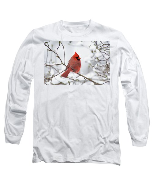 Northern Cardinal - D001540 Long Sleeve T-Shirt