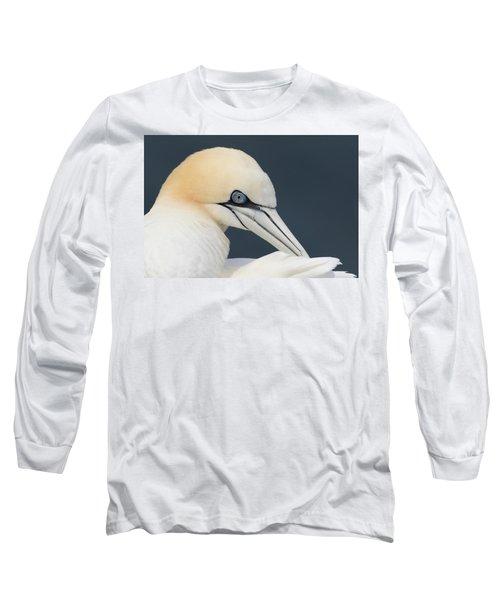 Northern Gannet At Troup Head - Scotland Long Sleeve T-Shirt