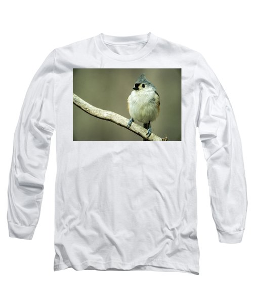 Titmouse Thinking About Weighty Matters Long Sleeve T-Shirt