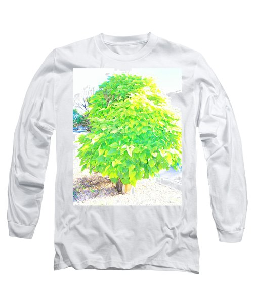 Long Sleeve T-Shirt featuring the photograph Obese American Tree by Lenore Senior