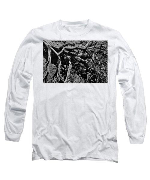 Old Sagebrush Long Sleeve T-Shirt
