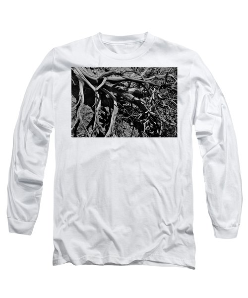 Old Sagebrush Long Sleeve T-Shirt