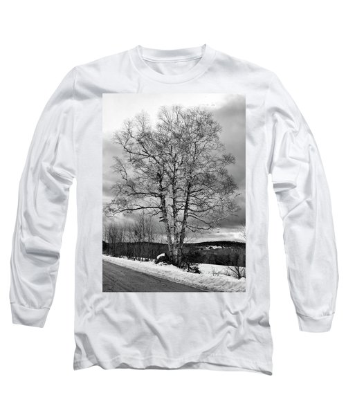Old White Birch Long Sleeve T-Shirt