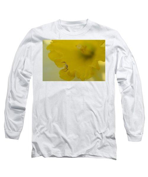 On The Edge Long Sleeve T-Shirt by Janet Rockburn