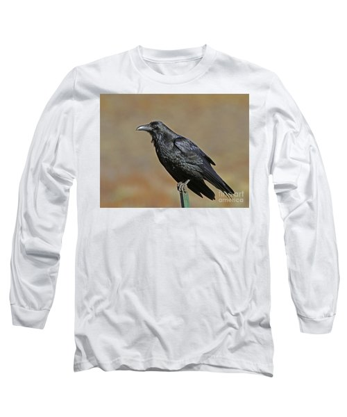On The Post Long Sleeve T-Shirt