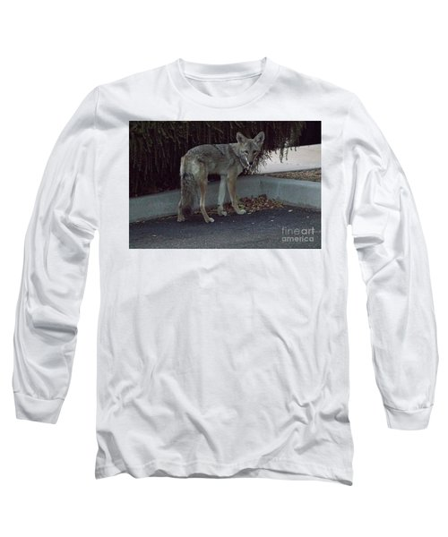Long Sleeve T-Shirt featuring the photograph On The Prowl 1 by Anne Rodkin