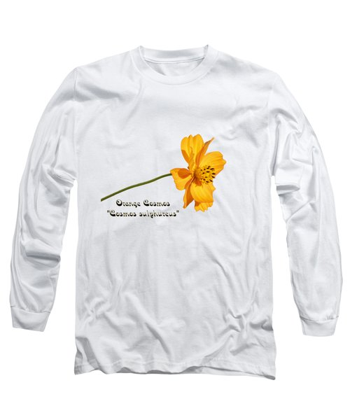 Orange Cosmos Isolated 2018-1 Long Sleeve T-Shirt