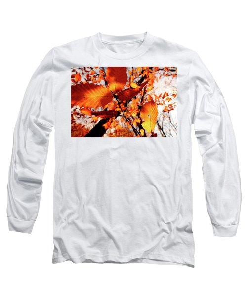 Orange Fall Leaves Long Sleeve T-Shirt by Meta Gatschenberger