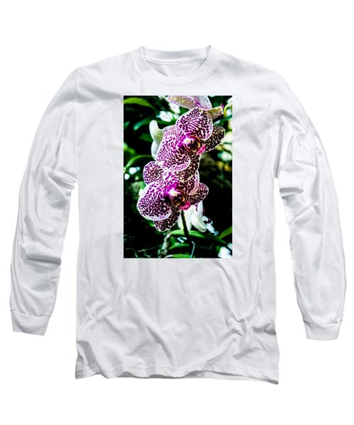 Orchid - Pla236 Long Sleeve T-Shirt by G L Sarti