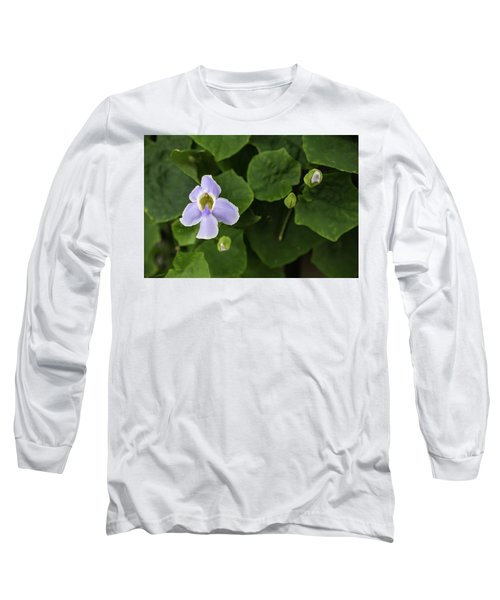 Orchids  Long Sleeve T-Shirt by Jingjits Photography