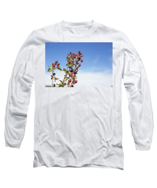 Organic Handpicked Home Orchard Raspberries,blackberries From Bu Long Sleeve T-Shirt