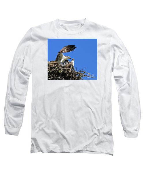 Long Sleeve T-Shirt featuring the photograph Osprey Chicks Ready To Fledge by Debbie Stahre