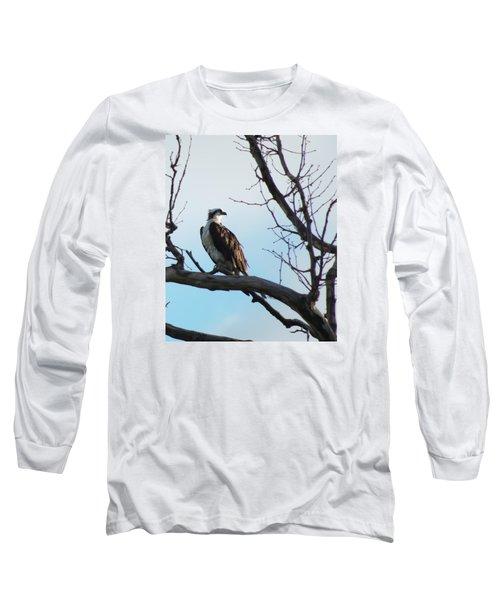 Osprey In Tree Long Sleeve T-Shirt