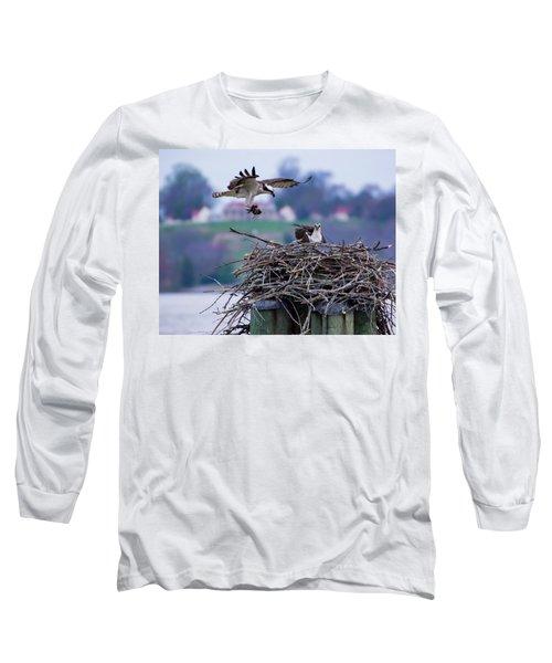 Osprey Nest Building Long Sleeve T-Shirt