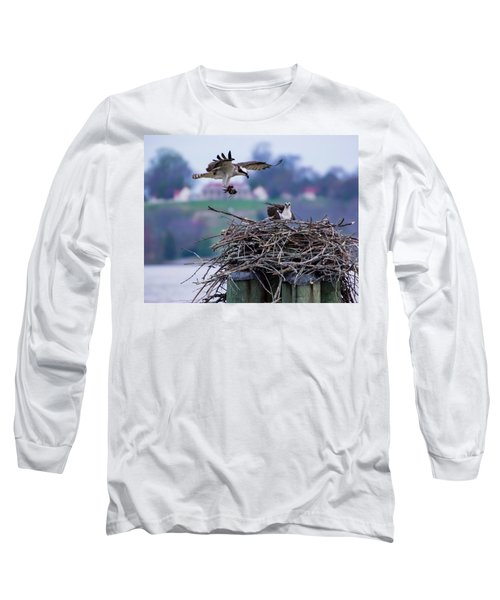 Osprey Nest Building Long Sleeve T-Shirt