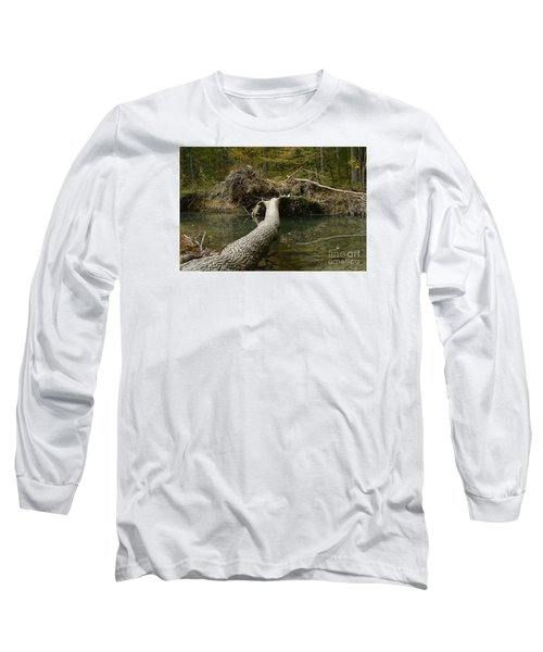 Over On Clover Long Sleeve T-Shirt by Randy Bodkins
