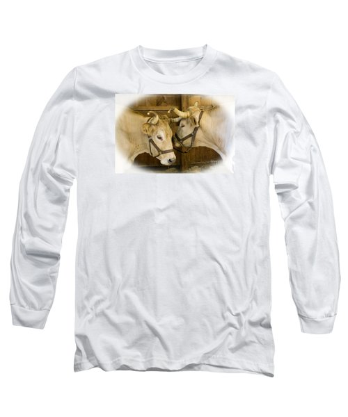 Oxen Team Long Sleeve T-Shirt by Kevin Fortier