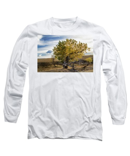 Painted By Nature Long Sleeve T-Shirt by Alana Thrower
