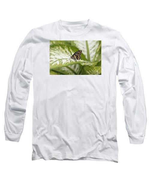 Papilio Demoleus Long Sleeve T-Shirt by Goyo Ambrosio