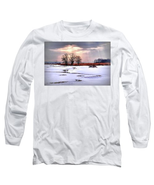Par For Winter's Course Long Sleeve T-Shirt by Diana Angstadt