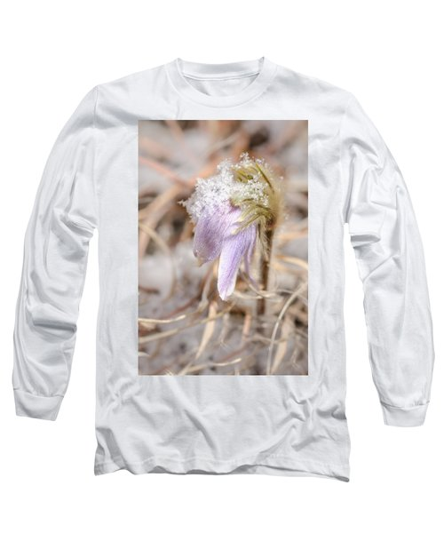 Past Pasque Long Sleeve T-Shirt