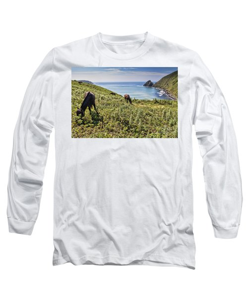 Pasture #2746 Long Sleeve T-Shirt