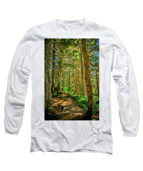 Path In The Trees Long Sleeve T-Shirt