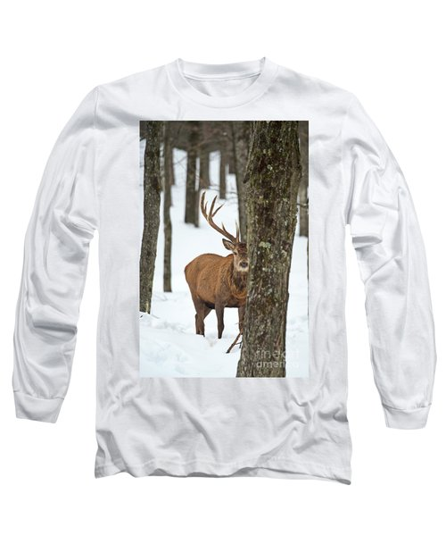 Long Sleeve T-Shirt featuring the photograph Peekaboo.. by Nina Stavlund