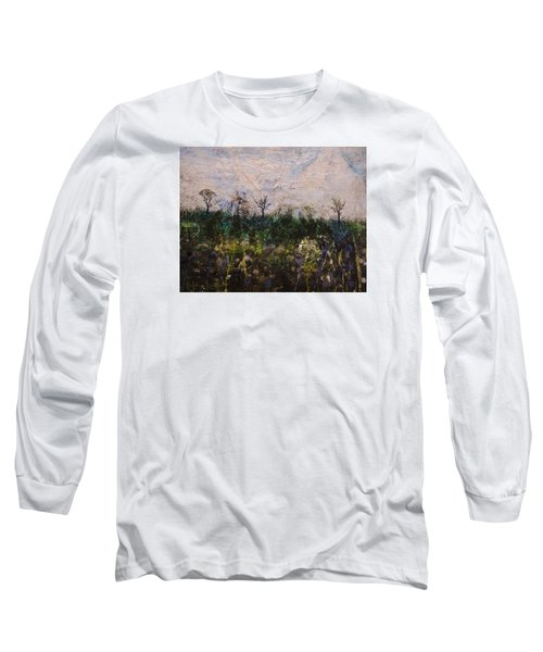 Pentimento Long Sleeve T-Shirt by Ron Richard Baviello