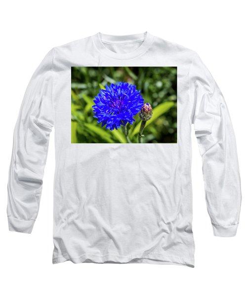 Perky Cornflower Long Sleeve T-Shirt