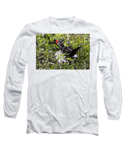 Long Sleeve T-Shirt featuring the photograph Pileated Pull-up by Myrna Bradshaw