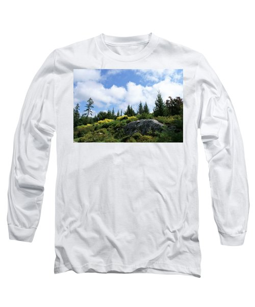Pines At The Top Long Sleeve T-Shirt by Lois Lepisto