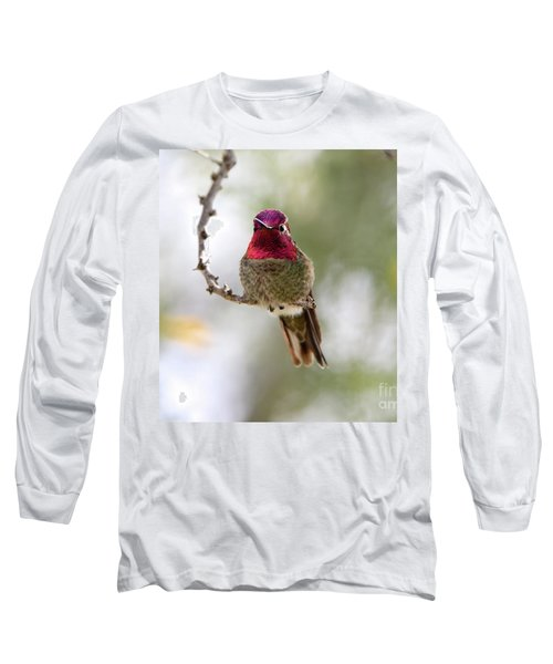 Pink Anna's Hummingbird Long Sleeve T-Shirt