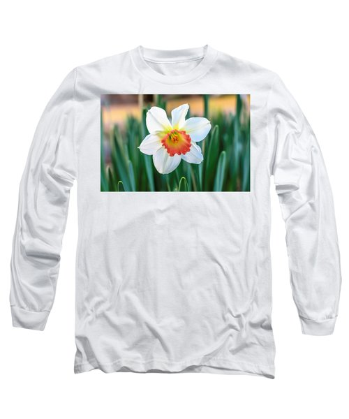 Pink Cup Solo Daffodil Long Sleeve T-Shirt