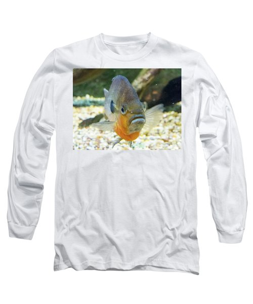 Piranha Behind Glass Long Sleeve T-Shirt