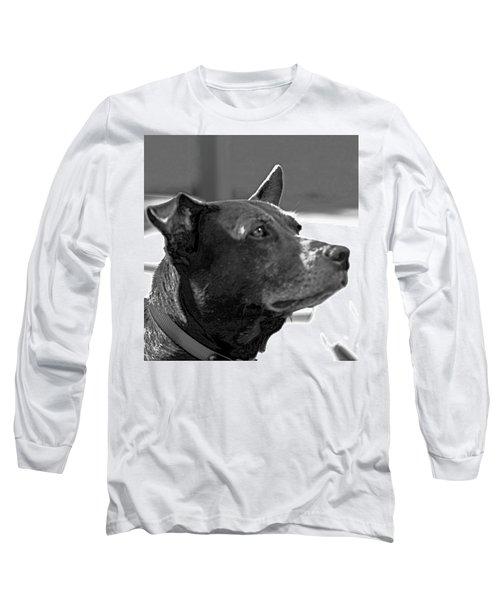 Please? Long Sleeve T-Shirt