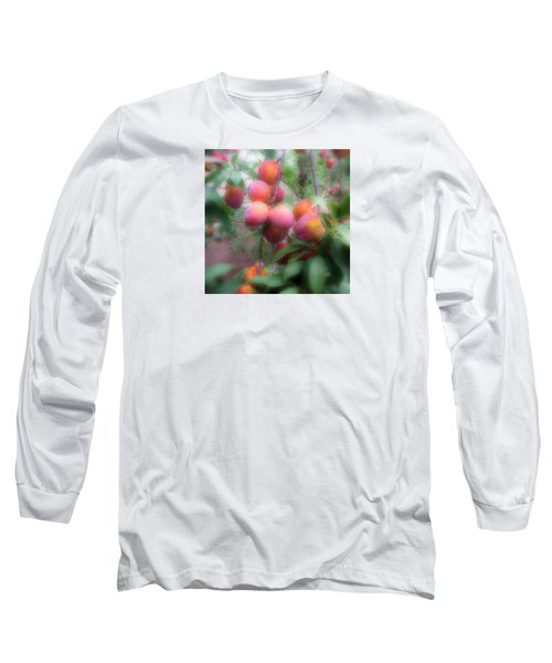 Plum Delight Long Sleeve T-Shirt