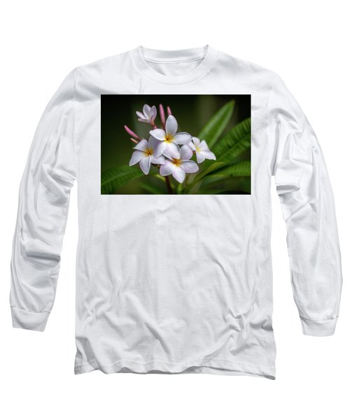 Plumeria 1 Long Sleeve T-Shirt
