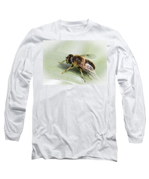 Pollen Dusted Long Sleeve T-Shirt