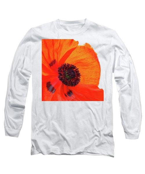 Poppy With Raindrops 2 Long Sleeve T-Shirt