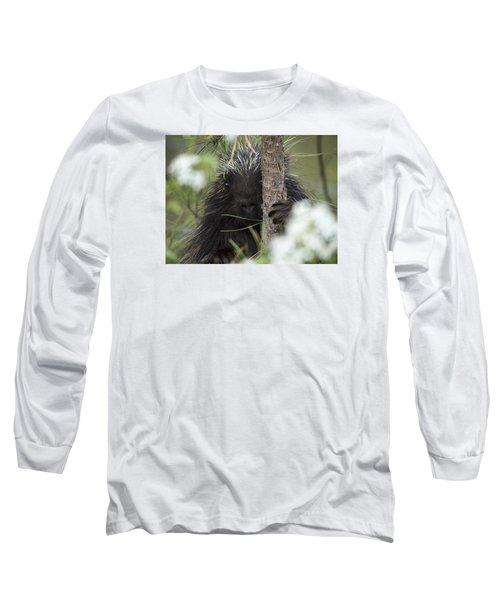 Porcupine Check-out Long Sleeve T-Shirt