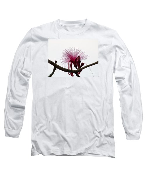 Powder Puff Long Sleeve T-Shirt by Amar Sheow