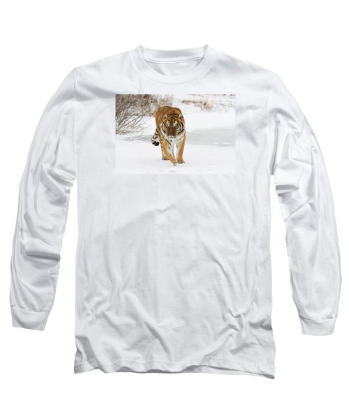Prowling Tiger Long Sleeve T-Shirt